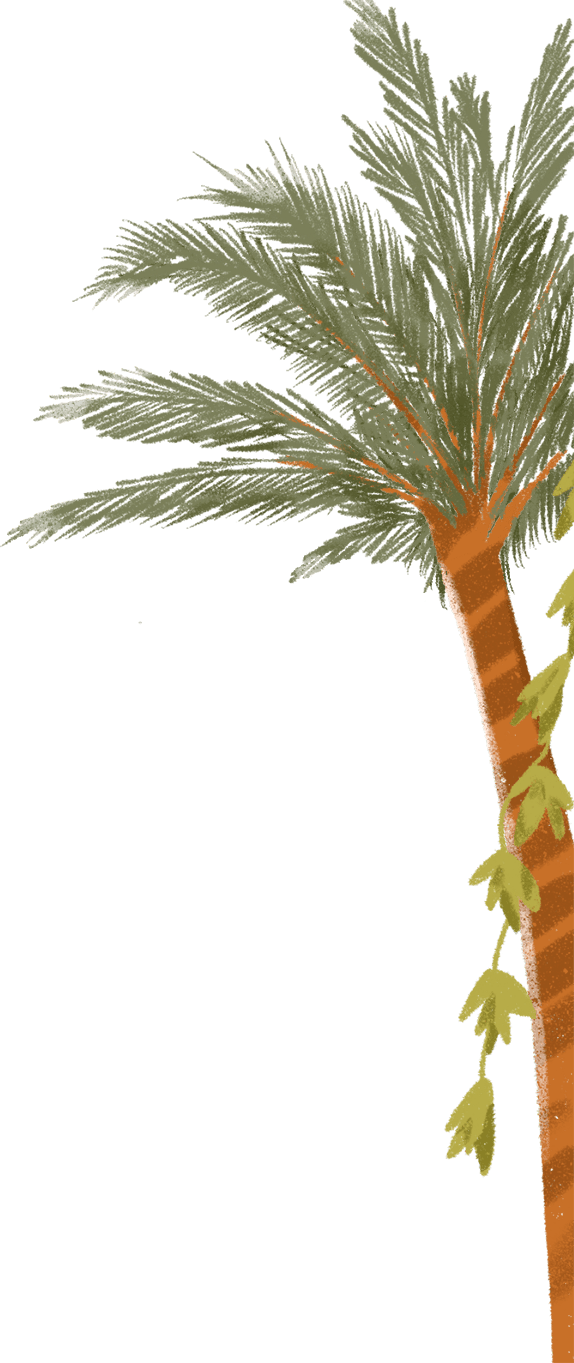 detail-palm2.png